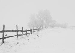 Canva - Black Wooden Fence - Verlichting van Toen